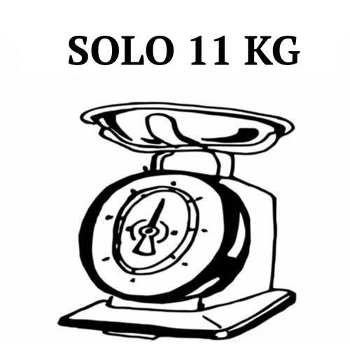peso monopattino elettrico kugoo s1