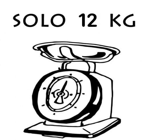 peso monopattino elettrico leggero