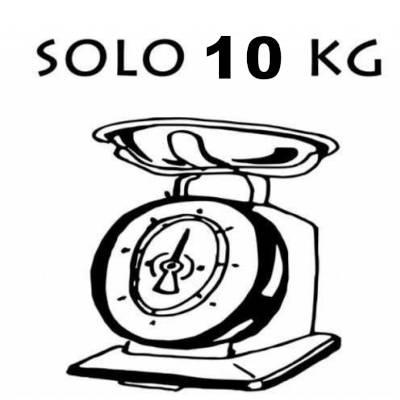 un monopattino elettrico che pesa solo 10 kg