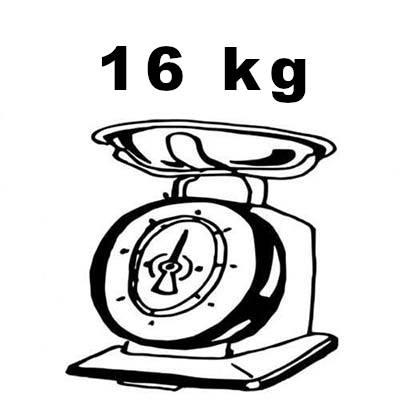 peso monopattino elettrico kugoo g2 pro