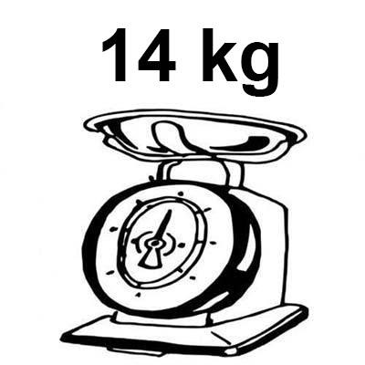 peso monopattino elettrico lexgo r9 pro