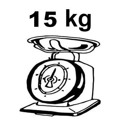 monopattino elettrico grande leggero 15 kg