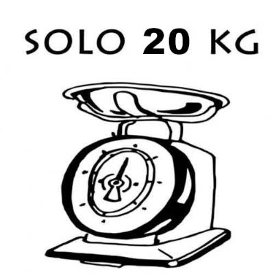 monopattino elettrico peso 20 kg