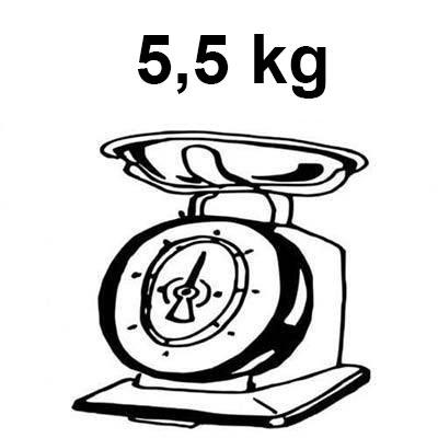 monopattino elettrico per bambini dal peso di 5,5 kg